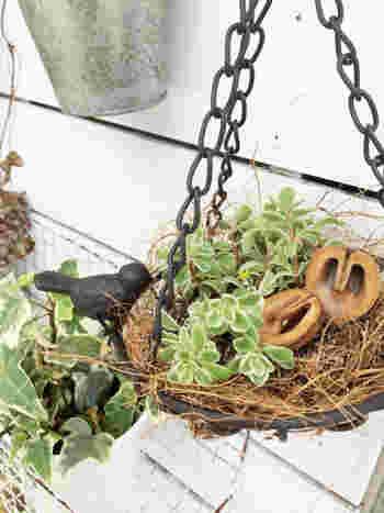 100円とは思えないクオリティのコトリが可愛いアイアンの吊りかご。 グリーンを入れてお庭に飾りたいですね。