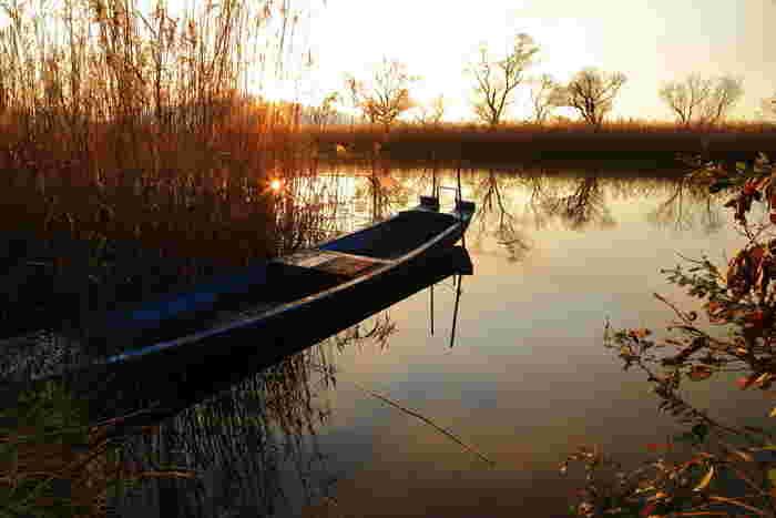 琵琶湖東南岸に位置するこの地は、豊かな自然と水のめぐみが織りなす景勝地の宝庫でもあります。
