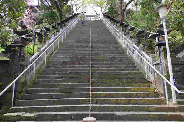 この「男坂」は、徳川家光に命じられて、急勾配の階段を馬で登ったことで出世した「曲垣平九郎(まがきへいくろう)」の逸話に基づき、別名「出世の階段」とも呼ばれています。