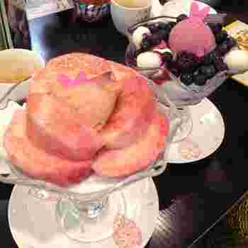 メニューでは、季節のパフェやコシヒカリのお団子などが人気です。季節の素材を使ったパフェは、期間限定のおいしさをたっぷり堪能できる一品。果樹園から採れたてのフルーツを使っているのだそう♪