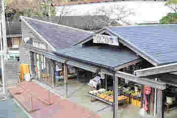 能古島渡船場の側にある「のこの市」。能古島産の新鮮な野菜や果物、お土産などが取り揃えられています。カフェや観光案内所もあり、多くの人が訪れる大人気のスポットです。レンタサイクルもあるので、能古島でサイクリングを楽しむことも。