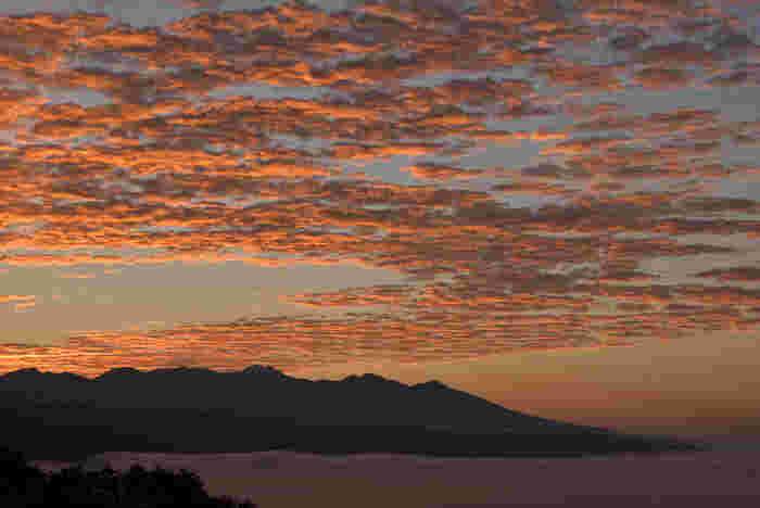 大自然×アートのぜいたく旅。「八ヶ岳~小淵沢エリア」の美術館&カフェ巡り