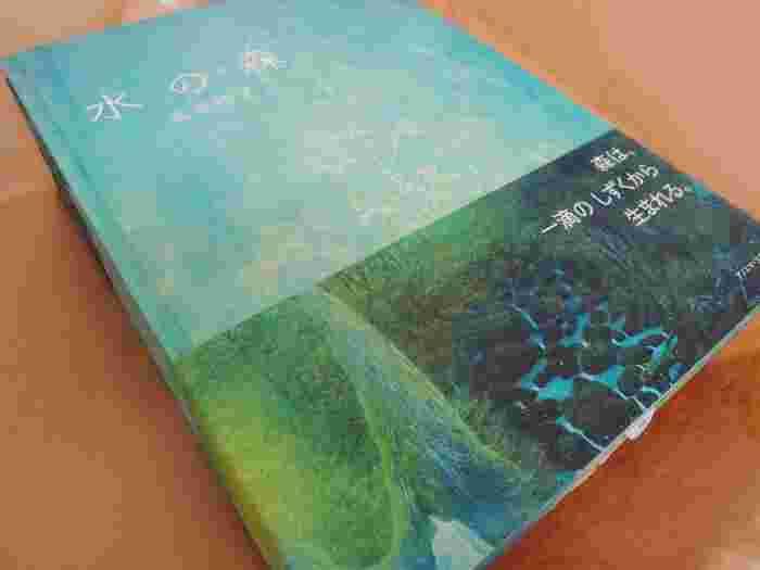 2015年9月に発売された高田裕子さん初めての絵本「水の森」。森が生まれる様子がみずみずしく生命力にあふれた様子で描かれています。