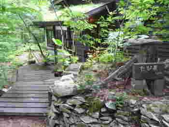 長野県・安曇野の森の「たび茶」。非日常を味わわせてくれる雰囲気が人気です。