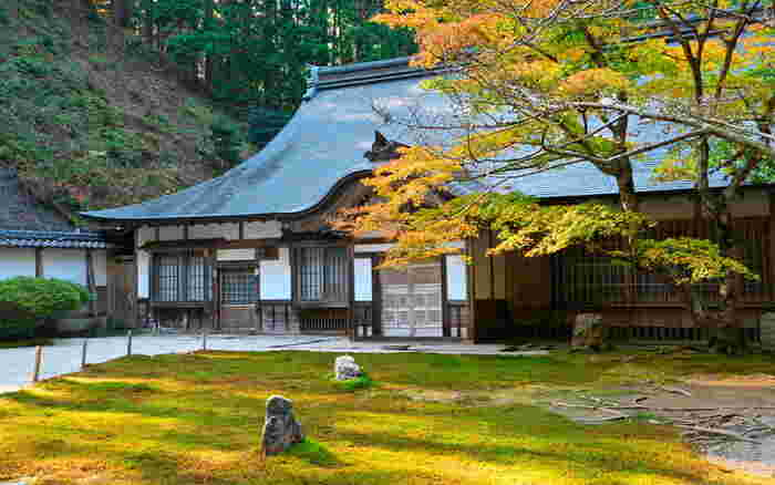 東堂と西塔の境界付近に位置する浄土院は、延暦寺を開基した最澄の御廟がある建築物です。ここは、比叡山の中でも最も神聖な場所とされています。風格ある浄土院の建物、一枚の葉さえも落ちていない美しい庭園からは、この場所が静謐な地であることを静かに物語っています。