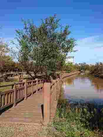 湖畔や周辺の公園を散歩するのも楽しいですね♪