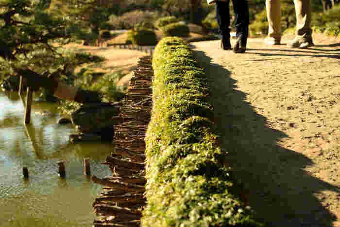 """「清澄庭園」は、江戸時代の豪商、紀伊国屋文左衛門の屋敷跡とされ、明治期に入ってから三菱財閥の創業者・岩崎弥太郎によって整備されました。泉水・築山(つきやま)・枯山水をめぐり歩いて楽しむ""""回遊式林泉庭園""""です。"""