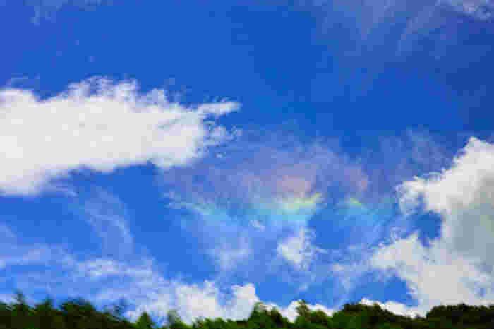虹のように色づいて見えるのは、日の光が雲を構成する氷の粒にあたり回折することが原因なのだそう。