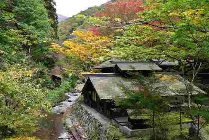 正確な開湯時期は不明とのことですが、地形から推測すると、1200年前頃に開湯して人々に使われてきたのではという説があります。