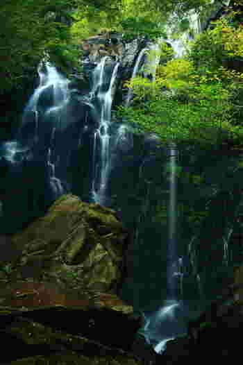 【鎌倉古道と旧東海道の間に位置する「飛龍の滝」は、箱根で隠れた人気のヒーリングスポット。畑宿バス停から徒歩10分程度。】