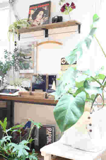 お部屋を彩るグリーンの植木鉢もカバーをかければよりおしゃれなインテリアに。植木鉢カバーも売っていますが、いらなくなったものを使って手作りするのもいいですね。こちらはもう履かなくなったデニムを使って作ったそう。デニム素材、そしてボタンがアクセントになっていて素敵です。