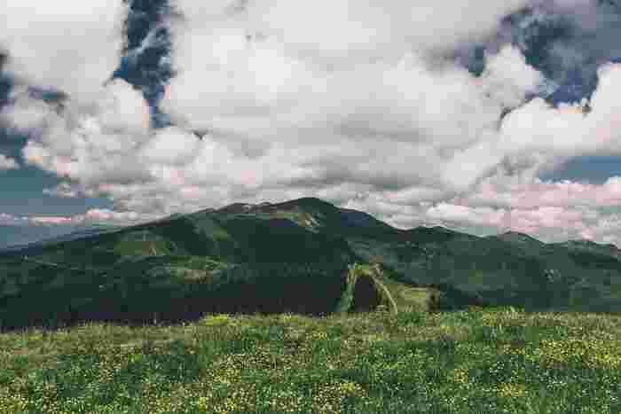 そしてオーストリアの美しい大自然もこの映画の見所。映画に登場するザルツブルグと美しい湖、アルプス山脈の迫力には圧巻。過酷な状況下でも愛を忘れず、強く乗り越えていく一家の歌声に、何度見ても胸が熱くなる名作です。