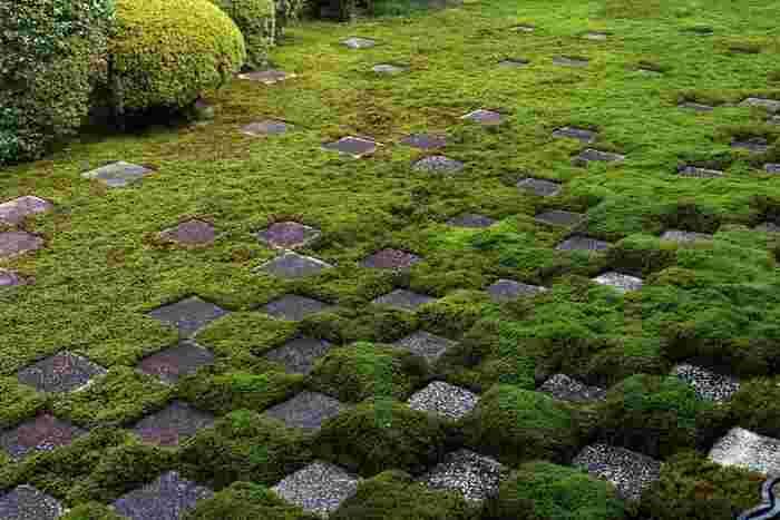 こちらは北庭。 石と苔で作られた市松模様に目を奪われます。