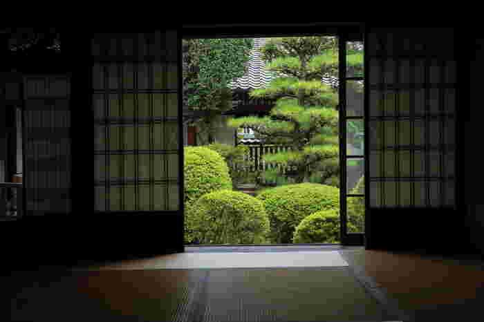 主屋の客座敷からは、絵画のような中庭の風景を眺めることができます。