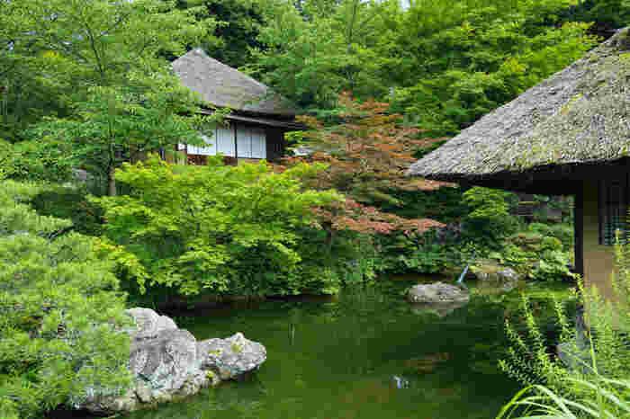 ここは、近世から近代にかけて多くの墨客が集めた由緒ある地。かつては料亭「京都 坂口」がありましたが、現在は「青龍苑」として生まれ変わっています。日本庭園が広がる苑内には、由緒ある茶室や待合等が点在しています。