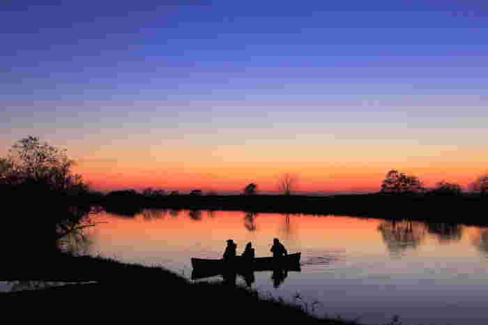 ネイチャーガイドによる案内や、カヌーでの川下りもおすすめ。知らない動植物の世界と触れ合うことができます。
