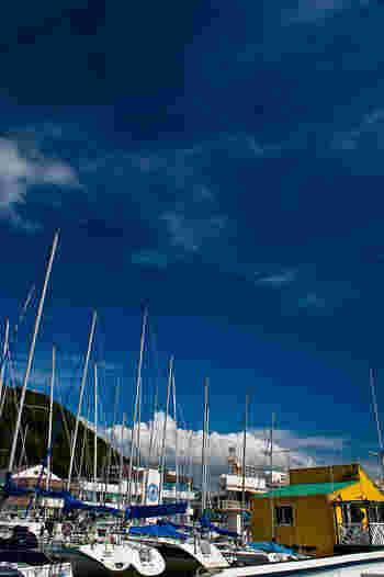 日本のヨット発祥の地「葉山マリーナ」は、ヨットが多く停泊しています。アフタヌーンクルーズで、気軽にクルーズ体験してみるのも◎