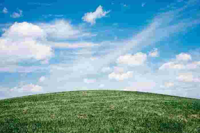"""2017年に発売されたアルバム""""たよりないもののために""""に収録されている「雲の夏」は、鮮やかに広がる青空と真っ白な雲。心躍るような軽快なメロディーで爽やかな夏が浮かびます。"""