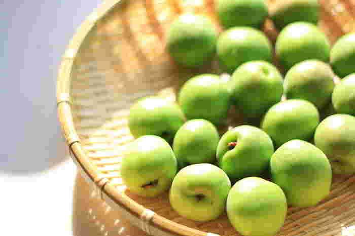 梅に付いた水分は梅酒造りの大敵です!水分がなくなるまで梅を乾かしましょう。他の梅を傷つけたり、カビが生えたりする原因になるので爪楊枝でヘタを取ります。