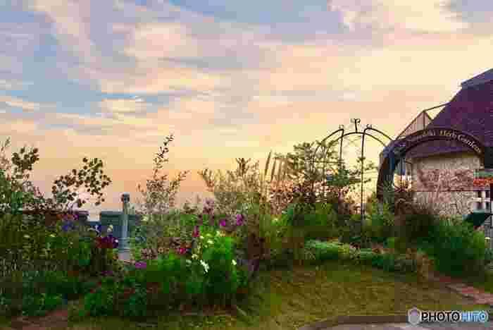 園内にはその名前の通り、季節に応じたハーブが植わっているんですよ!