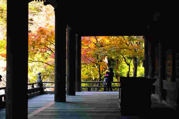 フォトフレームのように切り取られた「秋」の景色、なんて美しいのでしょう。 お香の香りがただよう中で心静かに取り組む写経体験も、興味深いですね。
