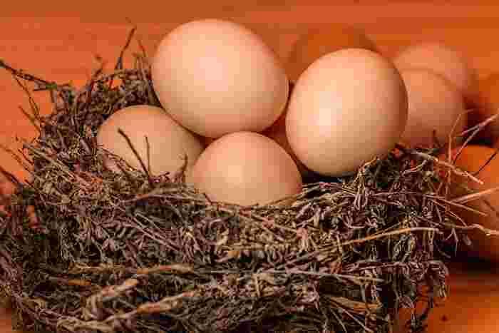 普段なじみ深い卵料理でも、作ったことがないレシピもあったのではないでしょうか。冷蔵庫の中の新鮮な卵たちが、あなたに料理されるのをワクワクしながら待っていますよ。さて、今日はどんな卵料理をつくりましょうか?
