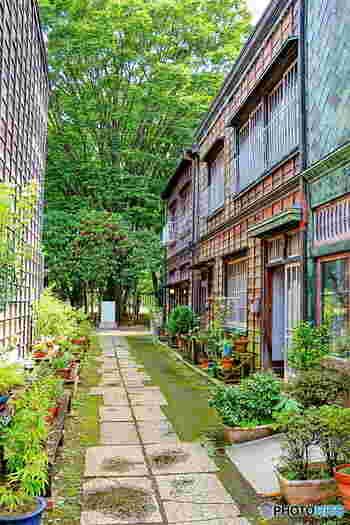 今も人が住んでいるような雰囲気が感じられる板塀の住居。夏の暑い日に打ち水する姿が目に浮かぶようです。