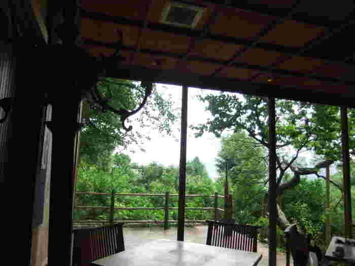 大きなガラス張りの窓から上野の杜が見えるテーブル席。クラシカルな外観の店内とはまた違った雰囲気を楽しめます。