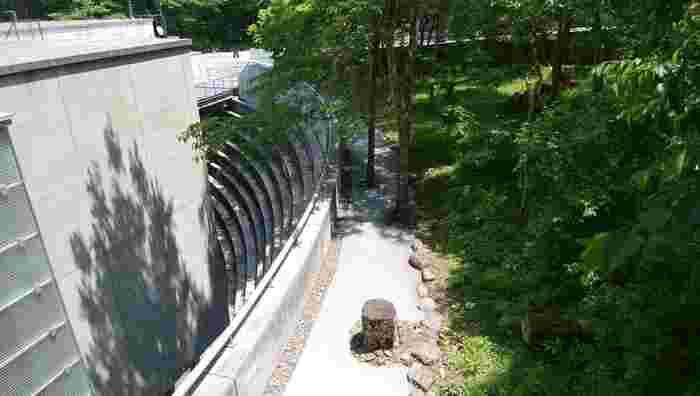 近代的で洗練された建築でも有名な当美術館は、仙石原の豊かな森の中に溶け込むようにレイアウトされ、建物の大部分が地下に配されています。【6月上旬撮影】