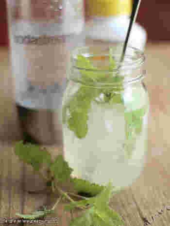 ■レモンモヒート  手軽なレモンシロップを使ったモヒート。暑い季節にぴったりな爽やかドリンクです。