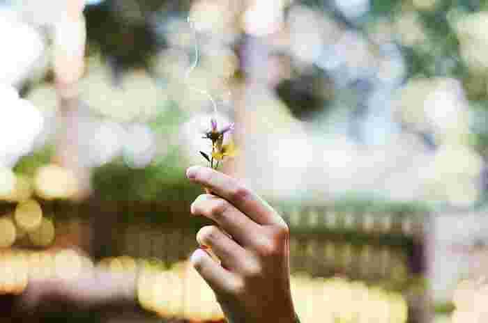 香りには様々な効果があります。気分を高揚させてくれたり、癒しを与えてくれたり。香りには私たちが想像する以上の素敵なパワーが眠っているのかもしれません。サンタマリアノヴェッラの歴史ある香りに包まれて、その恩恵にあやかってみませんか?