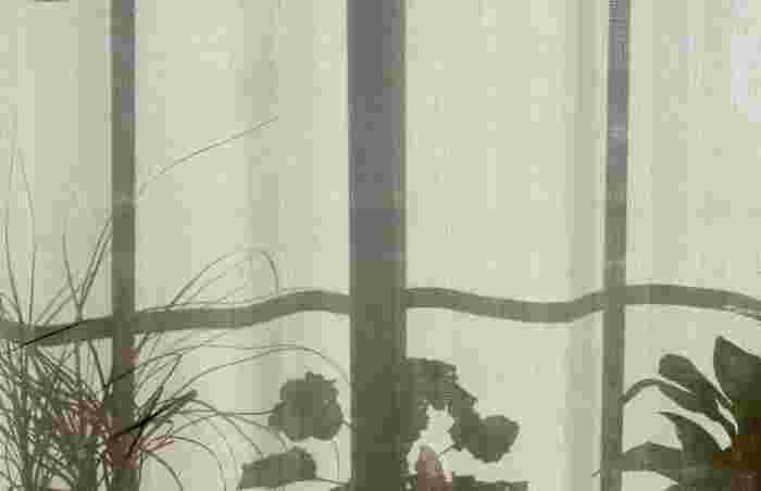 窓辺に置いた植物も、こんな風に撮るとアートな一枚に。モノクロでかっこよく仕上げましょう*