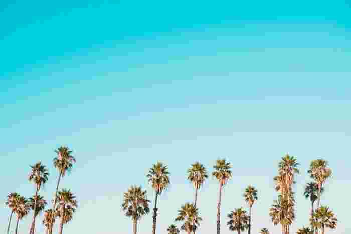 軽やかなメロディに癒されて♪夏を感じる心地よいサマーミュージック5選