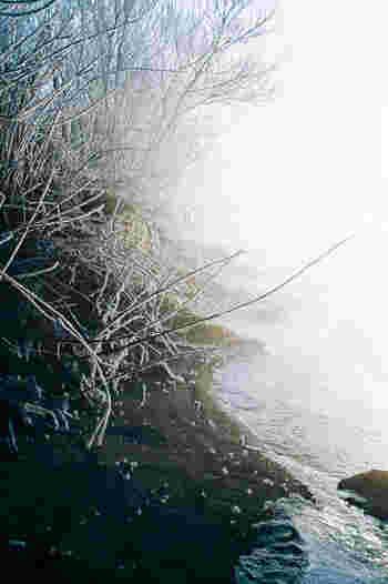 こちらは青みを加えて、冬の透明感を演出♪