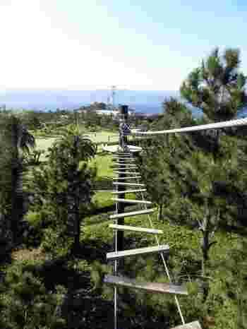 初島にあるアドベンチャー施設「SARUTOBI」。 名前の通り、サルのように高い木の上を渡るアドベンチャーとなっています。 専用のハーネスを付けて渡るので落ちる心配はありません。 21個のアクティビティの中から、出来そうだと思うものだけを選んでチャレンジ出来るので初心者でも大丈夫です。 海や伊豆半島を高いところから眺める景色はもう最高! 初島の自然を全身で体感できる魅力の自然体験施設となっています。