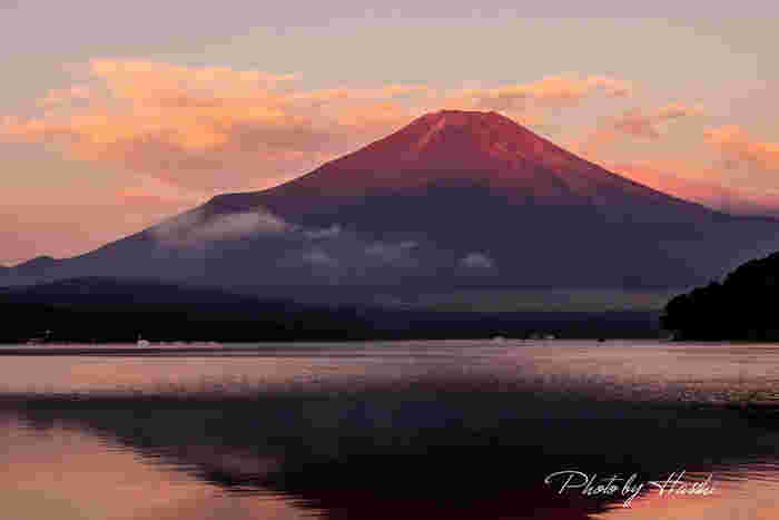 富士五湖の中で最大の湖、山中湖(やまなかこ)。水深は約13メートルと富士五湖の中で最も浅く、標高は最も高い湖です。「富士山に一番近い湖」とも言われています。河口湖とともに観光地として人気。山中湖、富士吉田、忍野八海への観光が便利な山中湖周遊バス「ふじっ湖号」も運行しています。