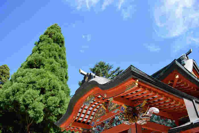 豪華絢爛な朱色の本殿が特徴です。澄み渡る青空と木々のコントラストで本殿の朱色がひときわ美しく見えますね。豊かな自然に囲まれていて、訪れるだけで清々しい気持ちになれますよ。