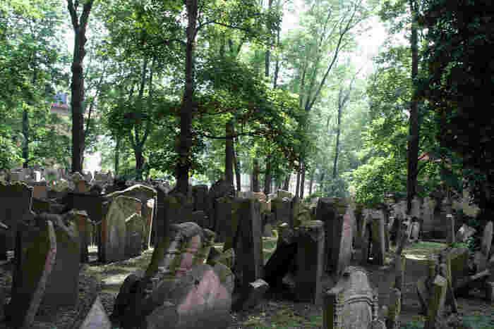広大な敷地内には、無数の墓碑が並んでいます。著名人から無名の人々まで、無数のユダヤ人たちが眠るこの地は、今でも静かに時を刻み続けています。