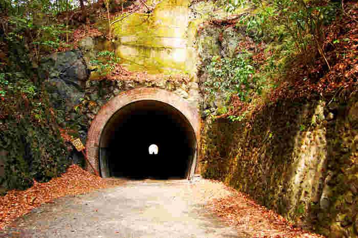 武田尾駅周辺には、旧福知山線の廃線跡が残されています。武庫川渓谷沿いの廃線跡はハイキングコースとしても人気なので、立ち寄ってみてはいかがでしょうか。