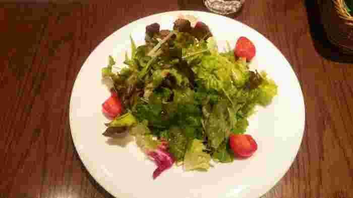 セットのサラダもたっぷり!肉や魚が入ったメニューはありませんが、野菜や大豆を中心においしく満足感のあるメニューが揃っているので、健康面を気にしつつも、しっかり食べたいときに訪れたいお店です。