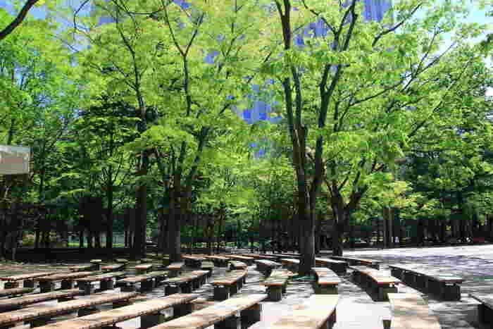 仙台三越の向かい側、市役所や国分町もすぐの仙台中心部にありながらも自然を楽しむことのできる「勾当台公園」。いこいのゾーン、歴史のゾーン、にぎわいのゾーンと3つに分かれています。