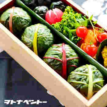 スシスチャードは、茎の部分が赤・黄・オレンジなどとてもカラフルで、新顔野菜として注目されていますね。めはり寿司は、おにぎりを高菜の葉でくるんだ熊野の郷土料理ですが、こちらはその洋風バージョンですね。スイスチャードをピクルスにして巻いているようです。