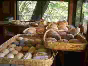 """窓の外いっぱいに見える自然が気持ちいい店内。かごに入ったパンは、素材にこだわったものばかり。国内産小麦や伊豆大島の伝統海塩「海の精」、地下100mの自家井戸水をはじめ、自家製天然酵母や、オーガニックフルーツなどを使い、できるかぎり""""身体にやさしい素材でのパン作り""""を追求しているそう。"""