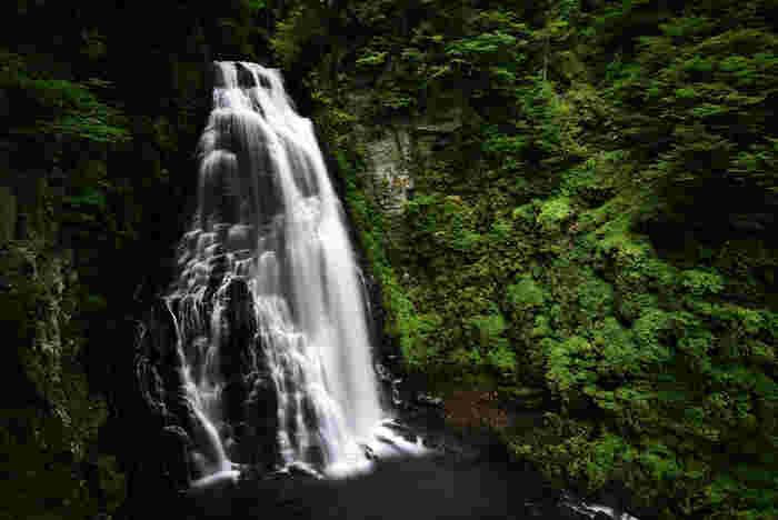 標高1248メートルの位置にあり、小大野川に架かる番所大滝は、落差40メートル、幅15メートルの滝で、圧倒的な水量を誇る迫力のある滝です。