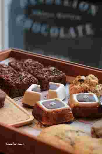 チョコレートバーの他にも、マシュマロとチョコレートで作られたスモアや、ブラウニーなど、チョコレートを使ったスイーツも楽しめます。