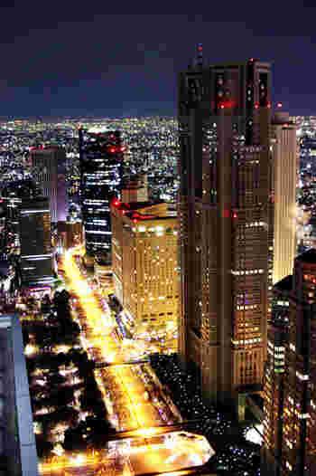 映画「ロスト・イン・トランスレーション」に登場するのが、新宿にあるこちらのホテル「パークハイアット東京」。新宿の夜景を見ながら映画の気分を味わえます。