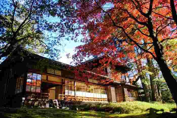 駅から少し離れた田母沢御用邸周辺。せっかく足を伸ばしたのだから、良いランチスポットを訪ねたいものです。