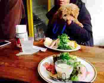 犬同伴OKですが、混み具合によって座れる席が決まるようです。その都度店員さんに確認してみてください。