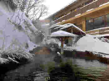 那須温泉郷は、那須町の北西部にそびえる茶臼岳の山腹に散在する温泉群です。 福島県南部を含む那須地方のランドマーク的存在である茶臼岳はいまも白い噴煙を上げながら、広大な山麓一帯に豊富な火山性温泉を自然湧出させています。