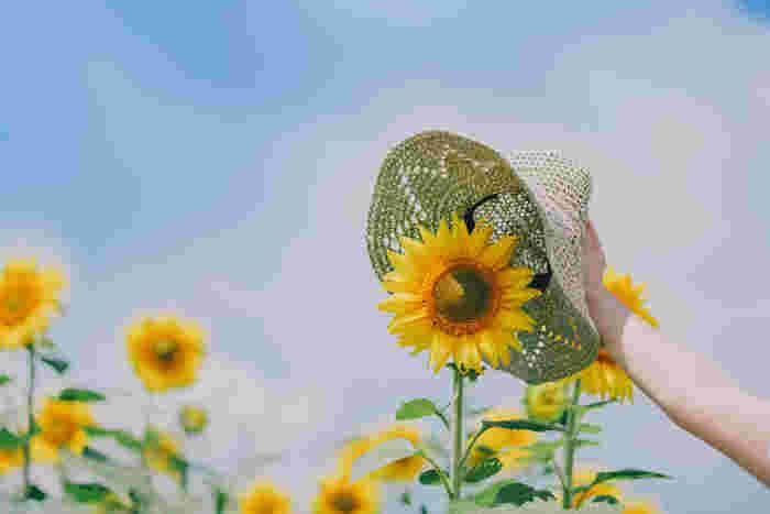 夏ならではの小物と一緒に撮影するのも面白いですよ。こちらは麦わら帽子と一緒に。なんとも可愛らしい一枚ですよね*